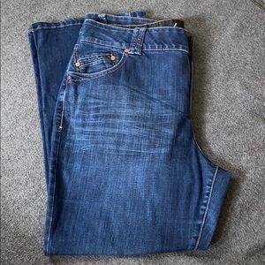 |LANE BRYANT| Women's Bootcut Jeans